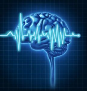 Human Brain ECG