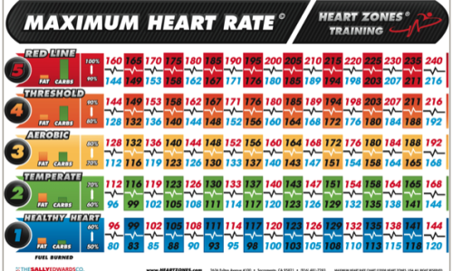 How is Maximum Heart Rate (MHR) Determined? - Medical Fitness Network