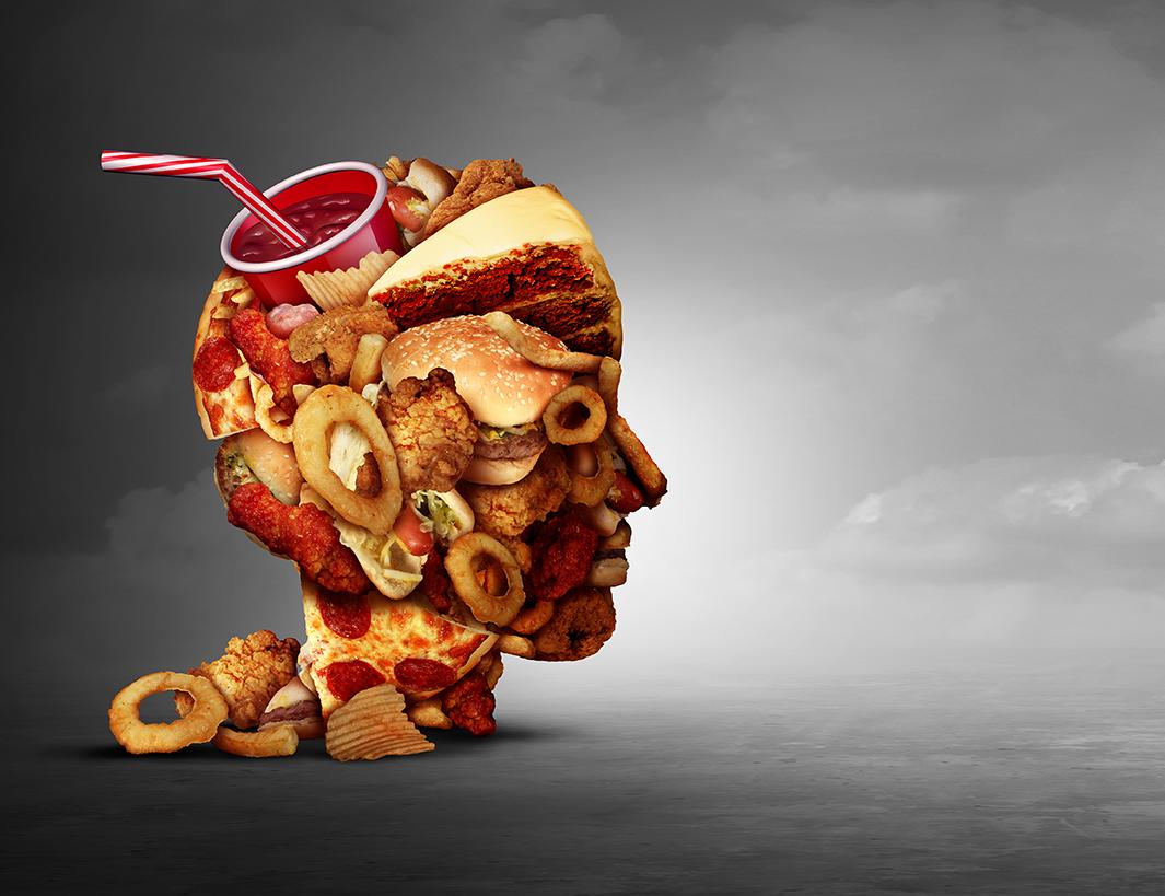Junk Food Concept