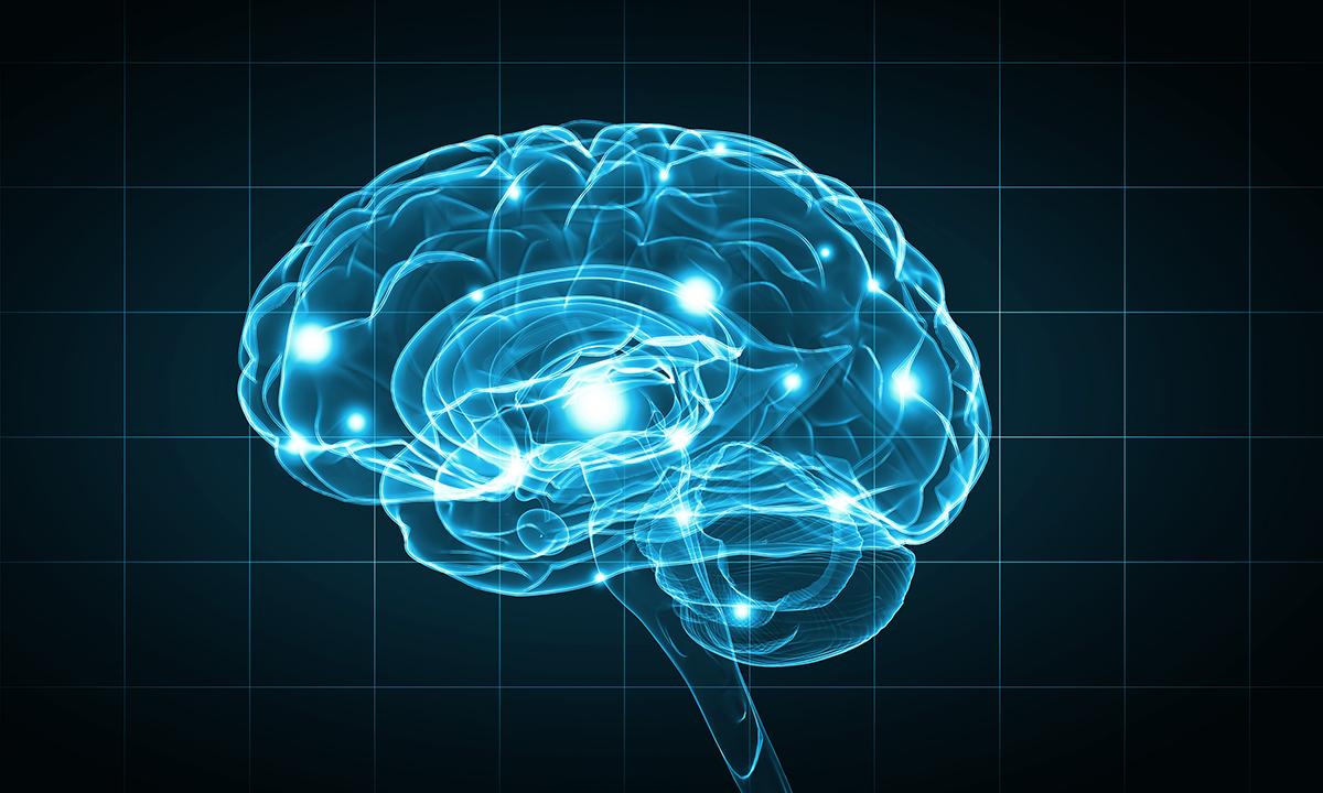 brain-digital-image