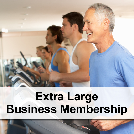 Standard Business Membership (1-5 Professionals)